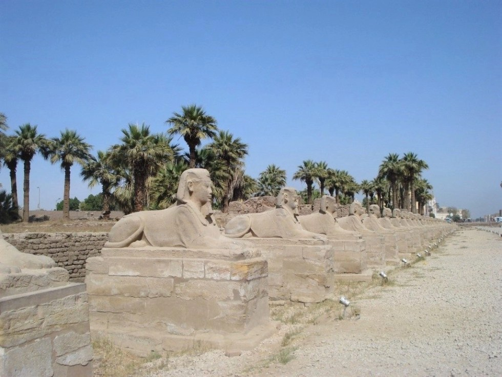 Long line of sphinxes lining a road called the Avenue of the Sphinxes in Egypt