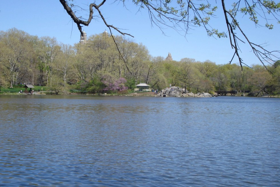 Lake with trees and small buildings inside the park in the background in Central Park in April 2010