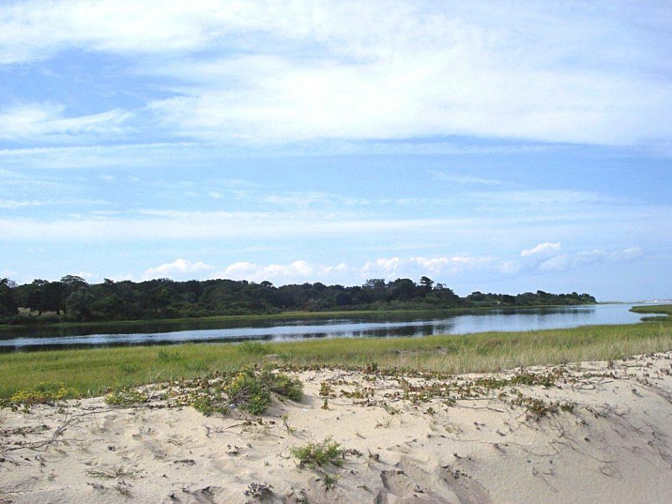 Sand dune on Chappaquiddick Island, Massachusetts