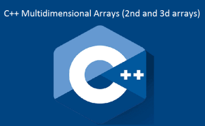 C++ Multidimensional Arrays