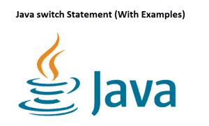 Java switch Statement