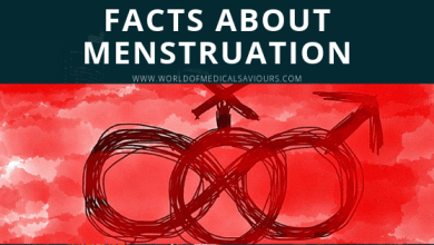 Facts about menstruation_woms