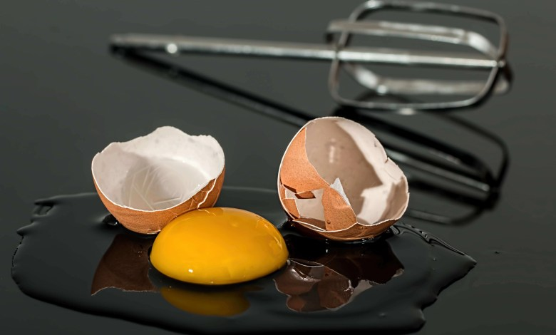 How crushed egg could help to repair bone damage?