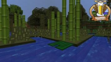 SimpleCraftSwamp