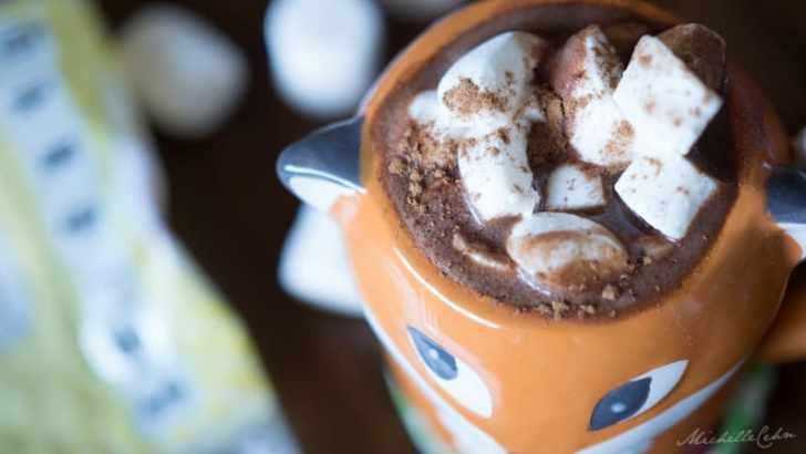 Cozy Vegan Mexican Hot Chocolate