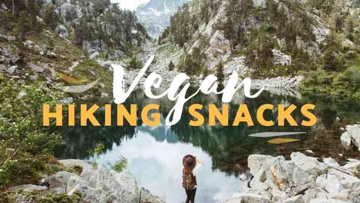 Best Vegan Snacks to Take Hiking