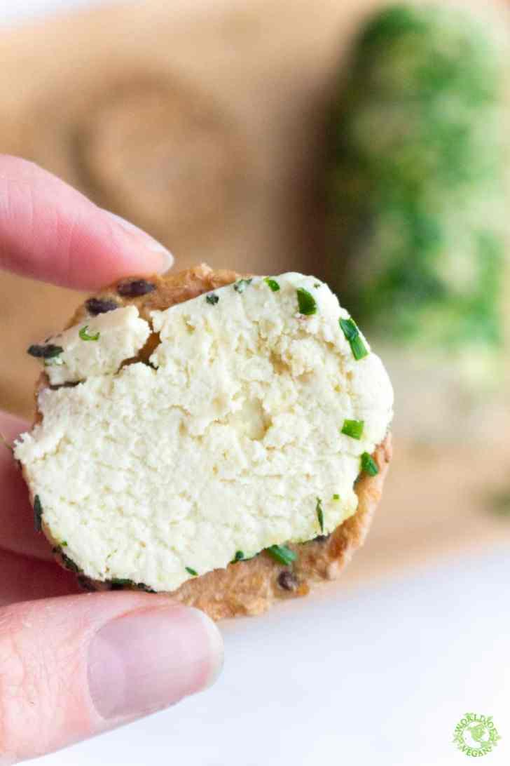 Vegan Cheese Log   Holiday Recipe   WorldofVegan.com   #vegan #cheese #recipe #holiday