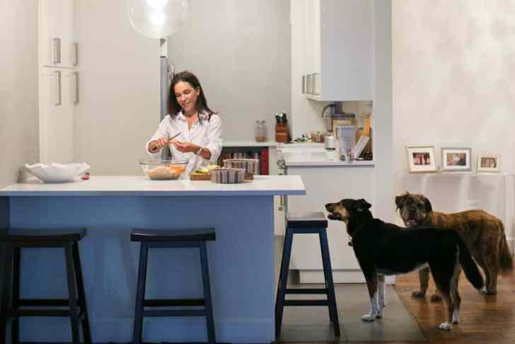 Can Dogs Be Vegan   Vegan Dog Food   WorldofVegan.com