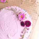 Vegan Birthday Cake With Pink Frosting Photo