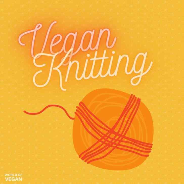 Vegan Knitting Guide Illustration Graphic