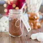 Homemade Vegan Hot Cocoa Mix