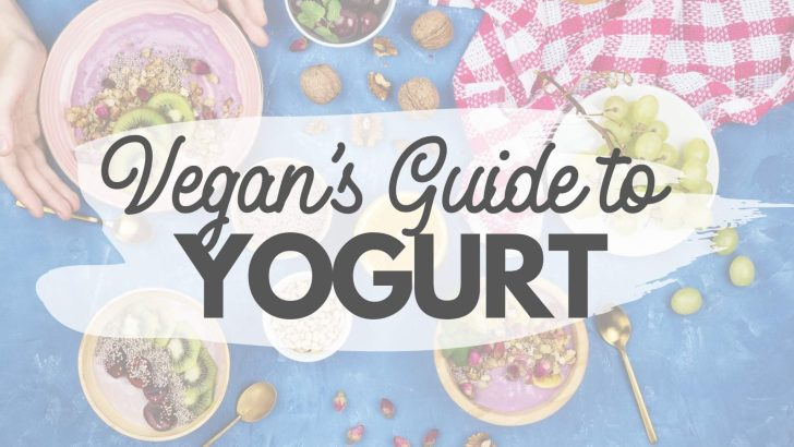 Plant-Based Yogurt Guide: The Best Vegan Brands & Recipes