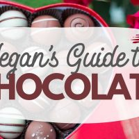Vegan Chocolate Guide: Plant-Based Chocolate Brands & Recipes Galore