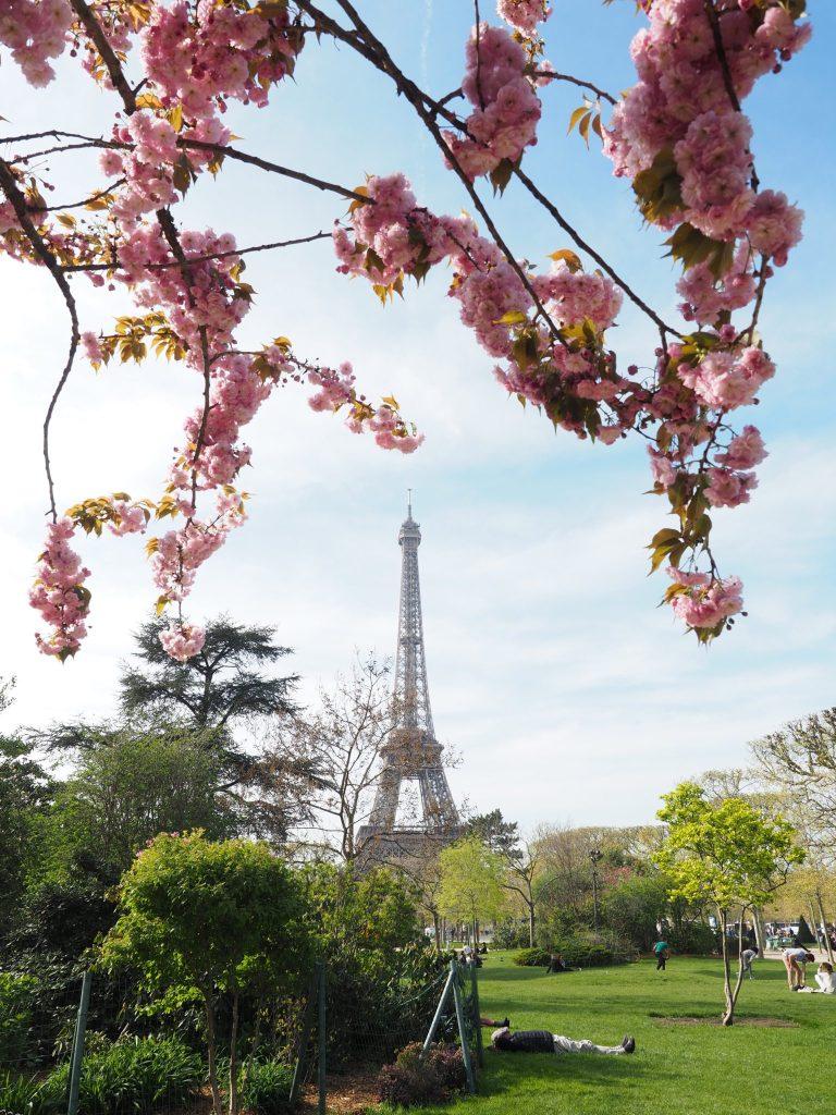 Paris in Spring | World of Wanderlust