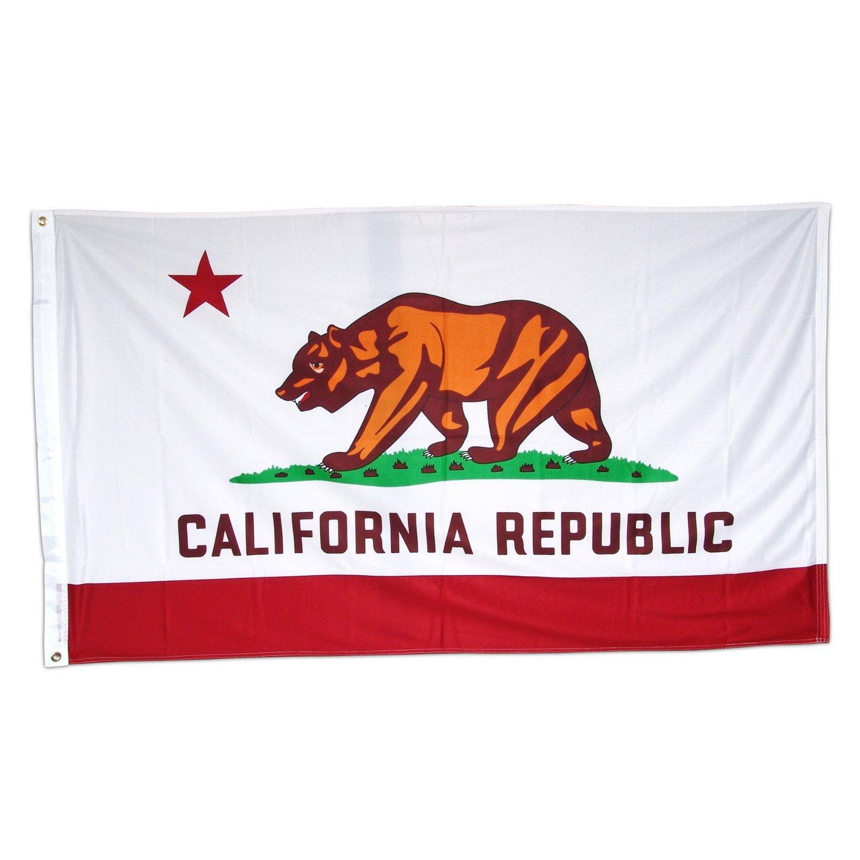 California State Flag 3 X 5 Ca Republic Banner