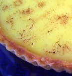 Meyer_lemon_pine_nut_tart2