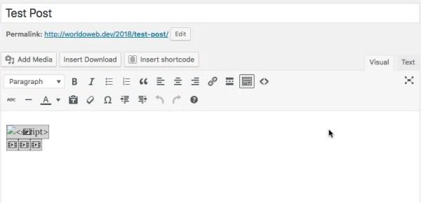 WordPress Editor Visual View