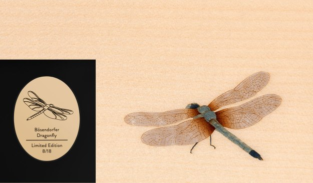 The brass plate and a dragonfly