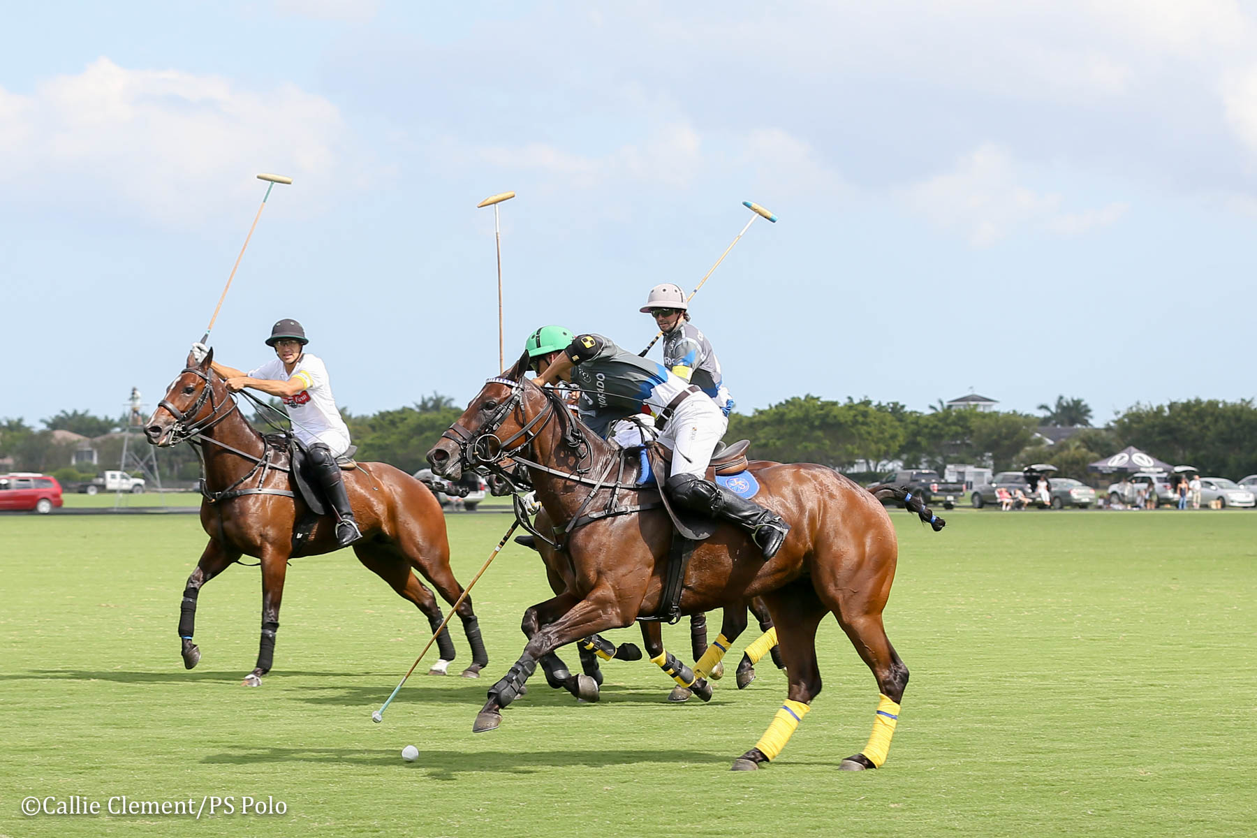 Daily Racing Form and Audi Dominate the First Two Game of the U S