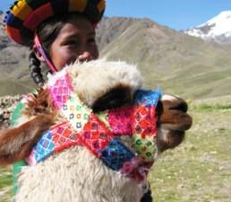 Alpaca Girl Puno