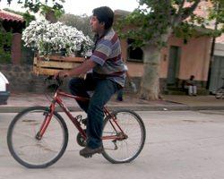 Bike Cafayate Flowers
