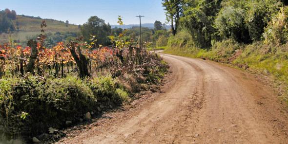 Brazil Wine Road