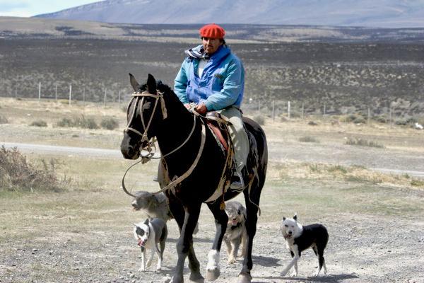 Caballero Con Perros-1