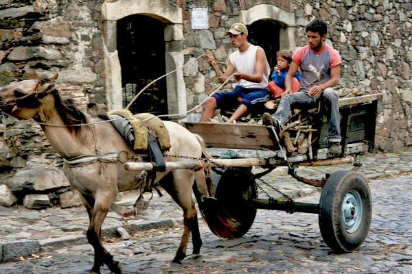 Colonia Horsecart