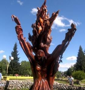 El Bolson Tree