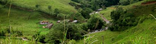 Honduran Countryside-1