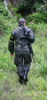 Jungle Trek Colombia