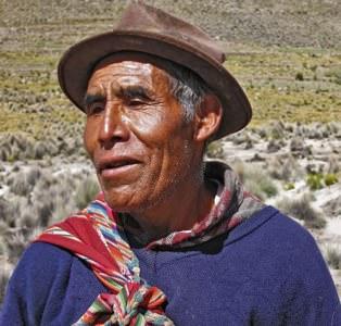 Llama Herder Uyuni