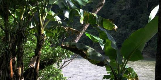 Rio Terraba Costarica