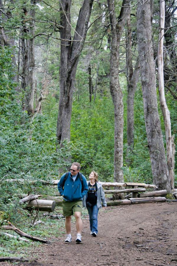 Tim Angie Hiking Trees
