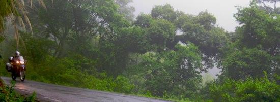 Verdant Road2Salta