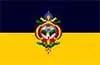 Tegucigalpa flag