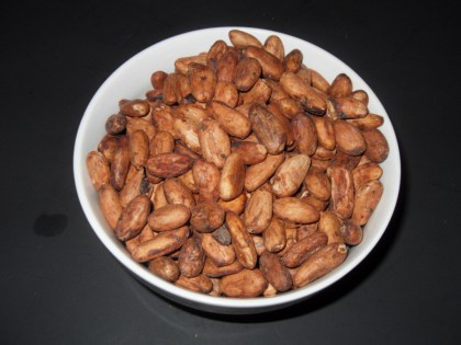 Theobroma Cacao (Chocolate) Dried Cocoa Beans