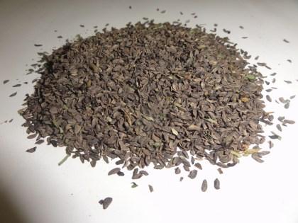 Pedicularis Grandiflora (Elephant Head Lousewort) Seeds