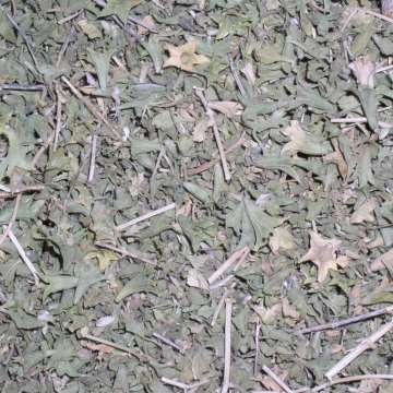 Lagochilis Inebrians (Turkish Mint) Herb