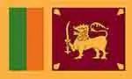 Sri Lanka's Top 10 Imports