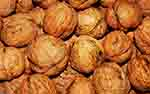 Top Walnuts Exporters by Country