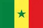 Senegal's flag