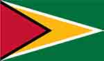 Guyana flag (courtesy of flagpictures.org)