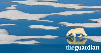 Save Arctic ice from Melting down