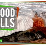 Antarctica Blood Falls Mystery solved!