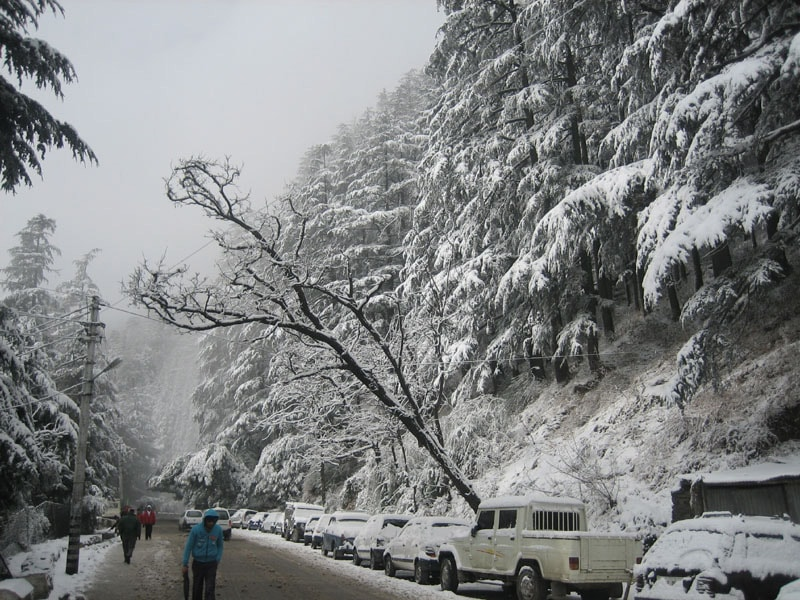 Top 5 Hill Stations in India You Should Know About