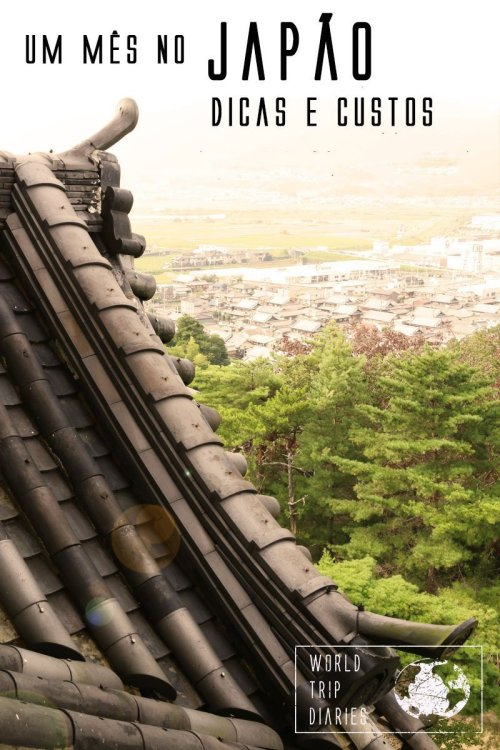 Visitamos o Japão com as crianças. Aqui, detalhamos os custos, nossos gastos, e contamos sobre tudo o que fizemos! Saiba mais!
