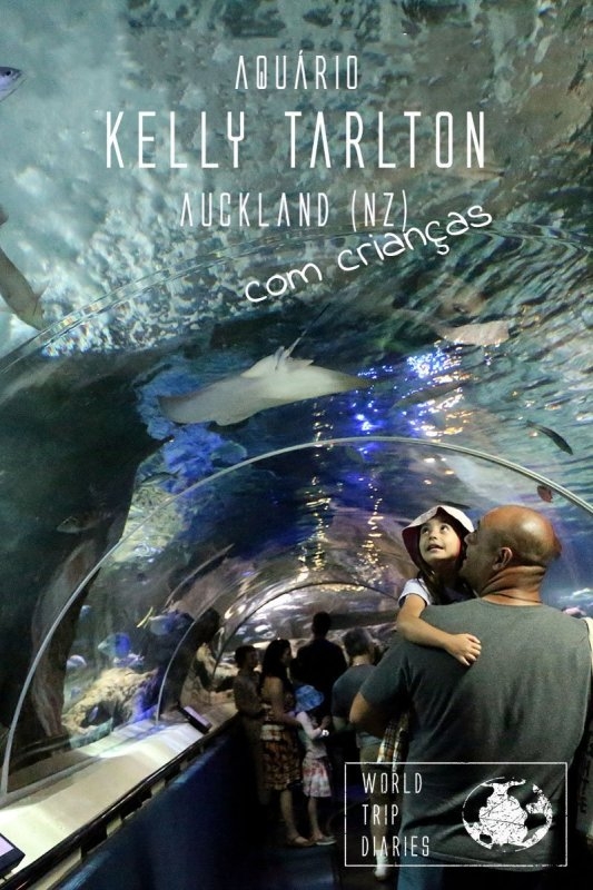 Kelly Tarlton, in Auckland (NZ) is one great day out for families. Click to read more!