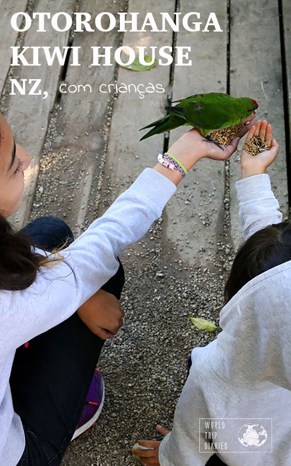 Visitamos a Otorohanga Kiwi House, NZ, com crianças. Aprendemos muito naquele dia, muito além das espécies e das ameaças dos pássaros nativos!