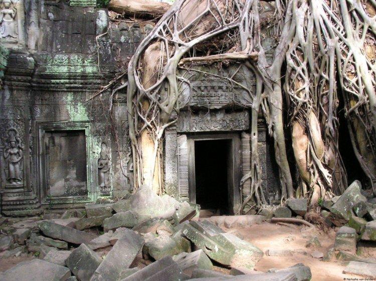 Angkor, Siem Reap, Cambodia